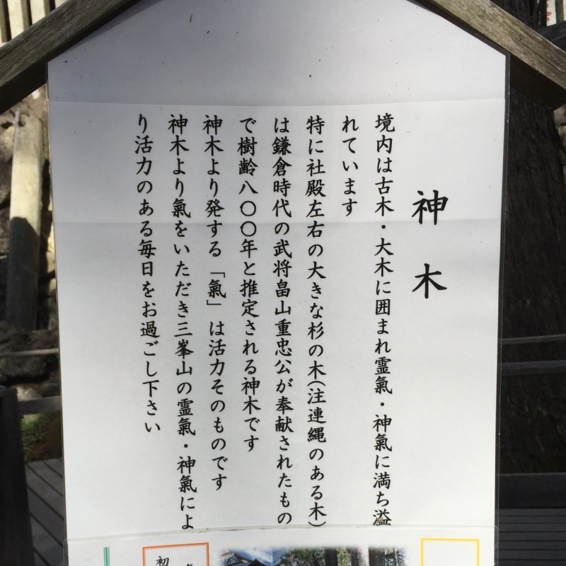 三峰神社 ご神木 説明書き